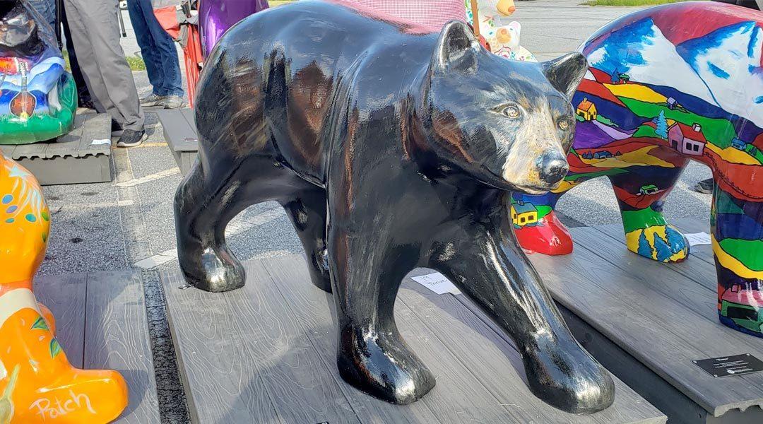 Bid On Bearfootin' Bears Starting September 15th