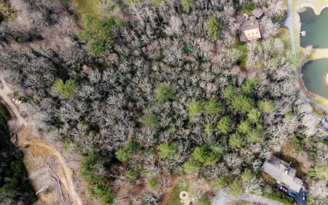 New Lot Listings with Long Range Mountain Views in Lake Community.