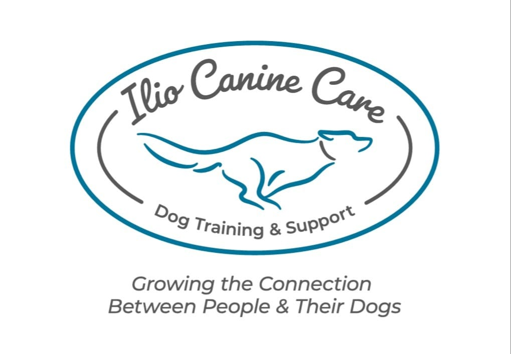 Ilio Canine Care