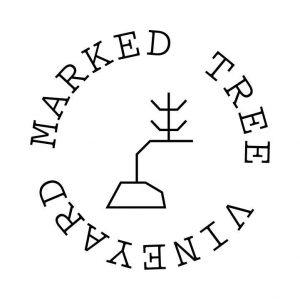 Marked Tree Vineyard